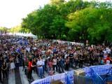 Muevete por Madrid en Moto 54