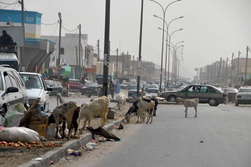 Mauritania 012