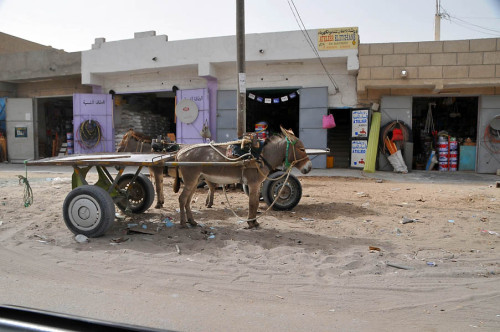 Mauritania 013