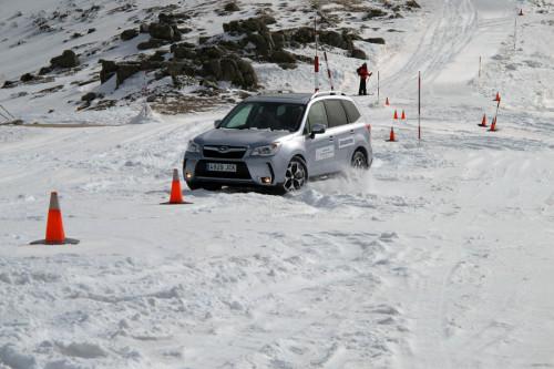 Circuito Nieve 21