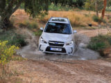 Ruta SUV Trail Subaru en Sevilla 042