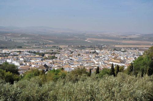 Ruta SUV Trail Subaru en Sevilla 058