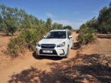 Ruta SUV Trail Subaru en Sevilla 089