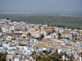 Ruta SUV Trail Subaru en Sevilla 112