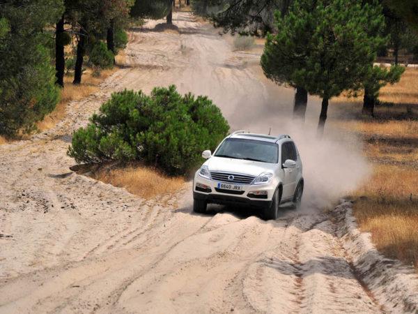 Ruta Trail. De Medina del Campo a Arévalo. Por tierra de pinares