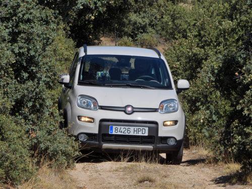 Ruta Trail Avila Fiat Panda