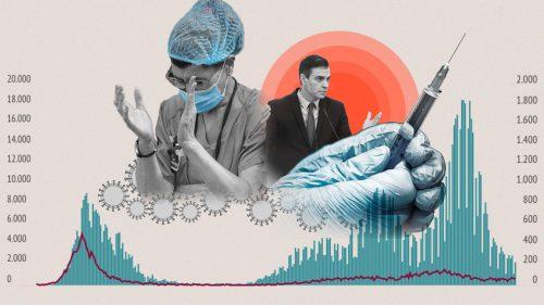 Que piensan los verdaderos expertos sobre la pandemia